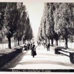 Аллея бульвара Шевченко в конце 19 века (в то время Бибиковский бульвар)