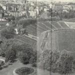 Республиканский стадион и район рядом на панорамном фото 1957 года