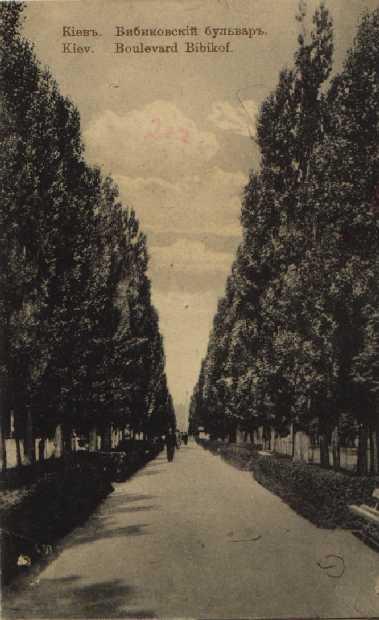 Тополиная аллея на Бибиковском бульваре в начале 20 века
