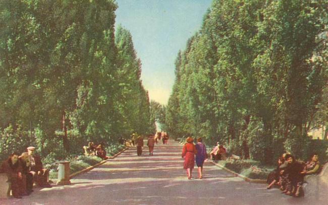 Ботанический сад имени Фомина в 50-х годах