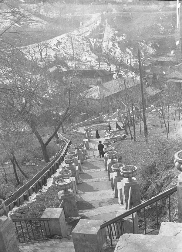 Старая Воздвиженка, 1956 год, Киев