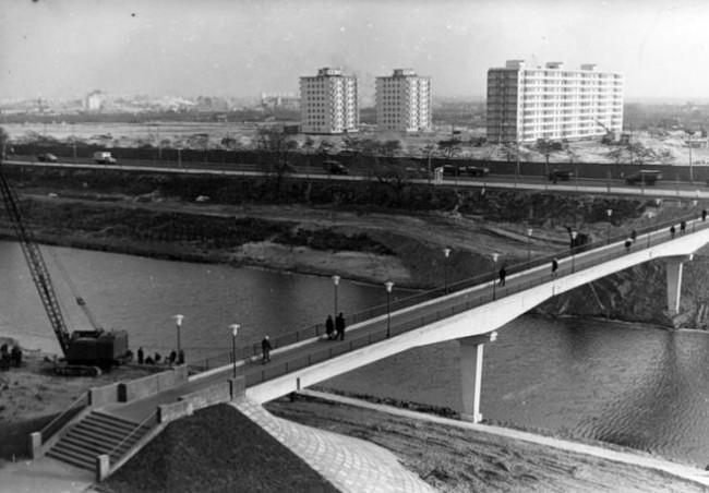 Березняки в 60-х годах, Киев