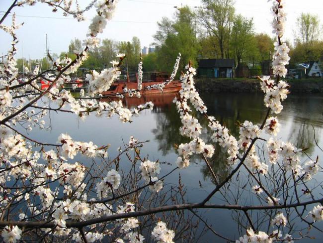 Весенний Гидропарк, 2006 год, Киев, Днепр