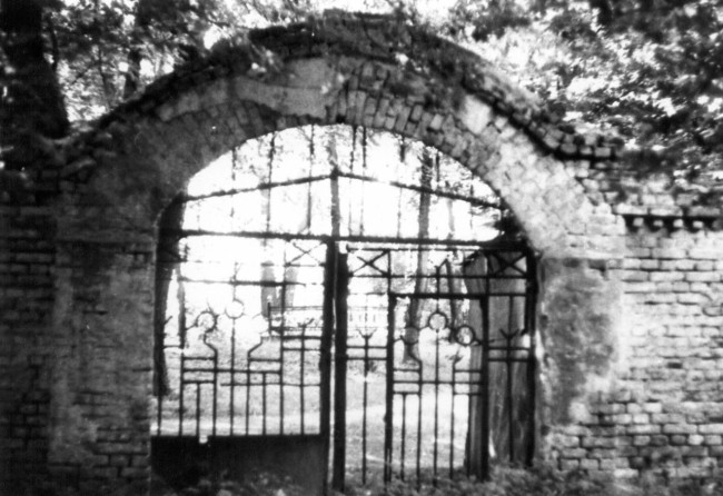 Щекавицкое кладбище, Щекавица, конец80-х