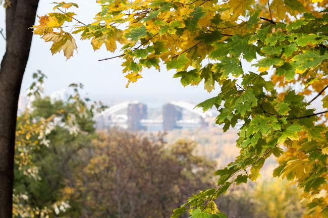 Осенние фотографии Киева