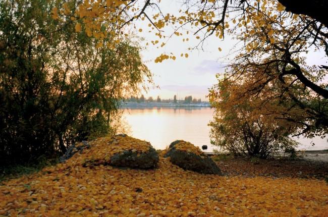 Осенью на Трухановом в Киеве