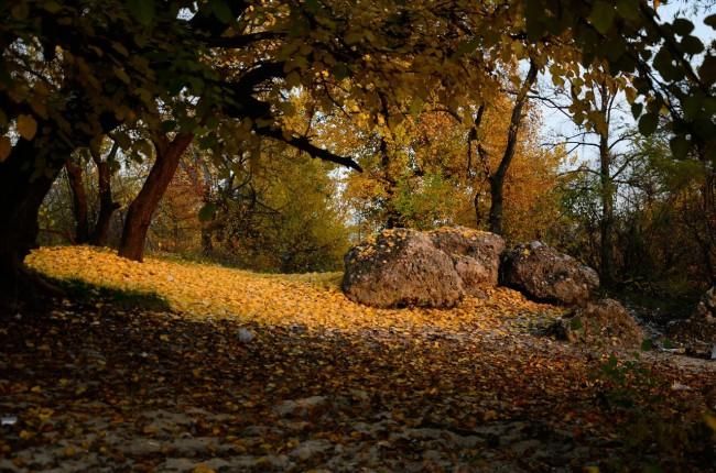 Осенью на Трухановом острове, Киев