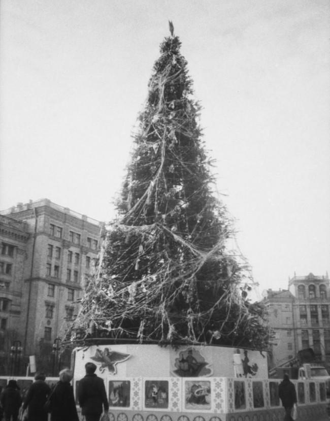 Новогодние елки на Майдане в Киеве