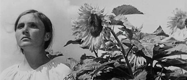 Показ Земля Довженко живое выступление Даха Браха 24 и 25 сентября 2014 года