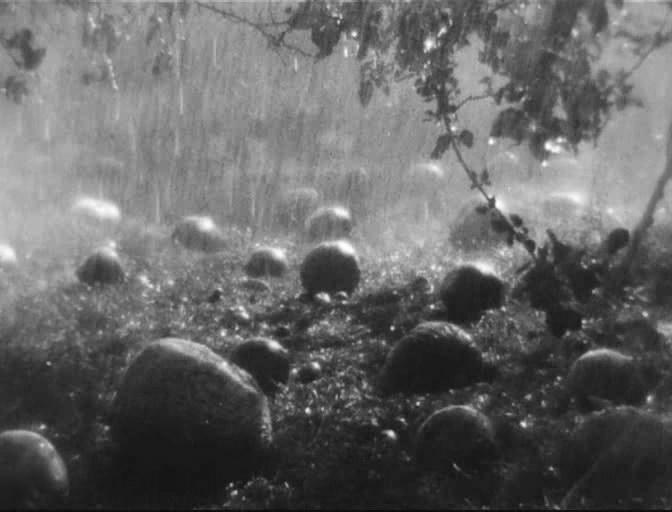 Показ фильма Земля Довженко живое выступление Даха Браха 24 и 25 сентября 2014 года