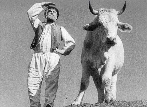 Показ фильм Земля Довженко живое выступление Даха Браха 24 и 25 сентября 2014 года