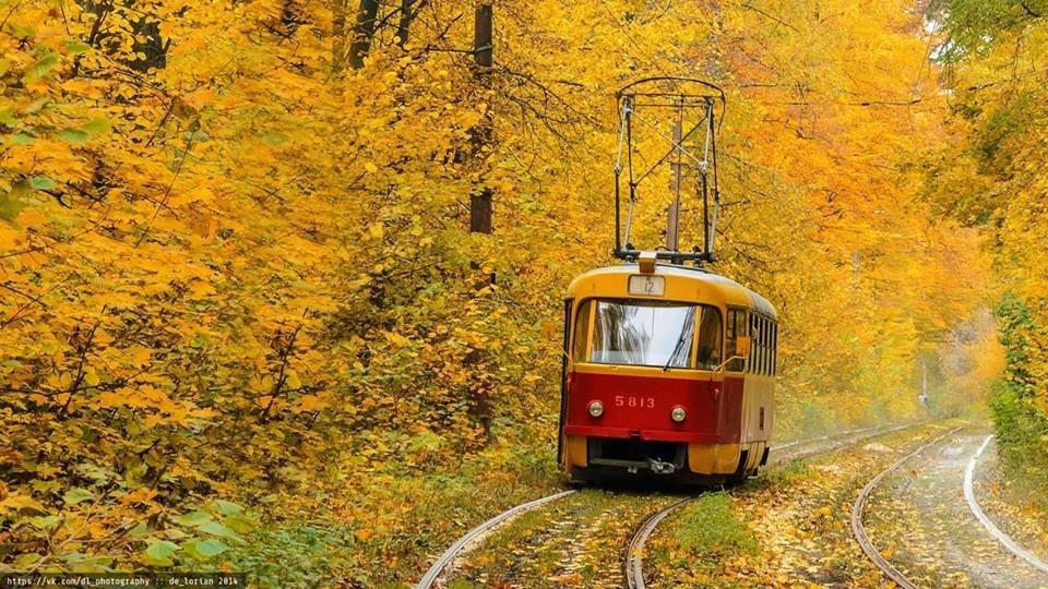 Золотая осень в Киеве