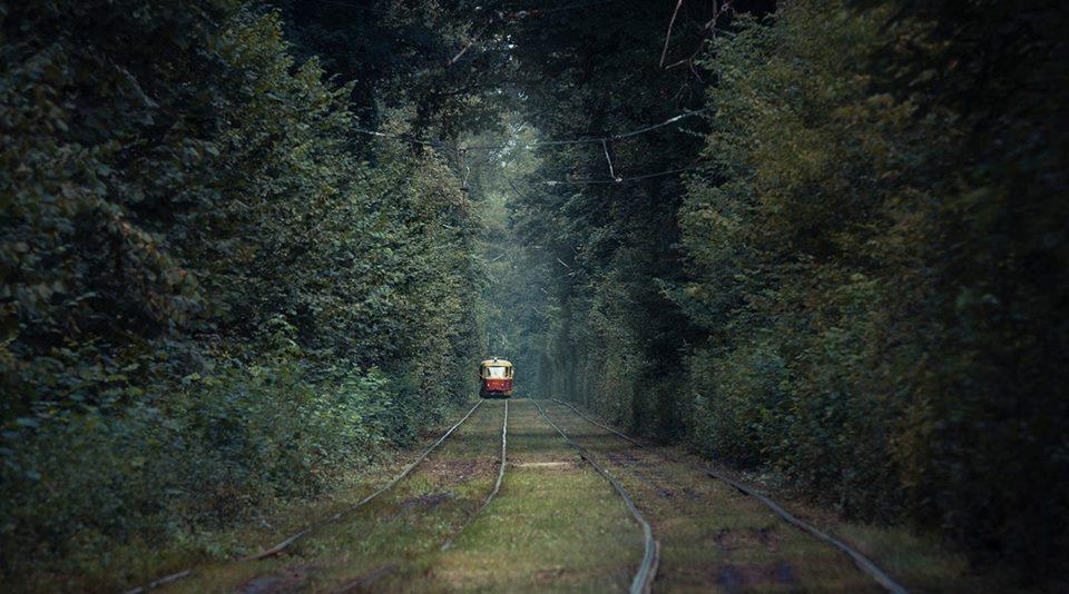 Трамвай в Пуще-Водице, зеленое лето