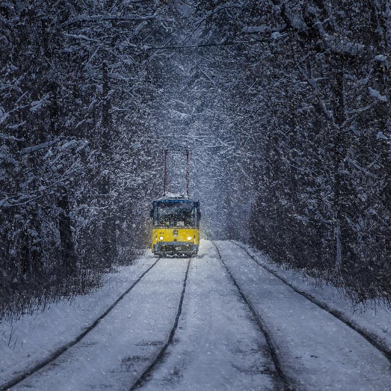 Зимний трамвай Пуща-Водица