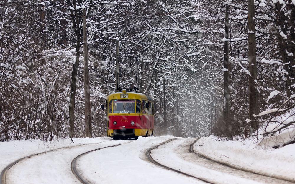 Трамвай в зимней Пуще