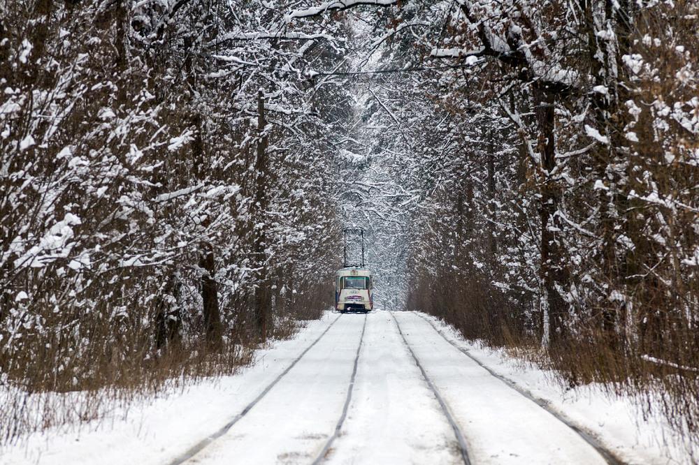 Трамвай зима Пуща-Водица