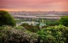 Киев Катерины Синельник